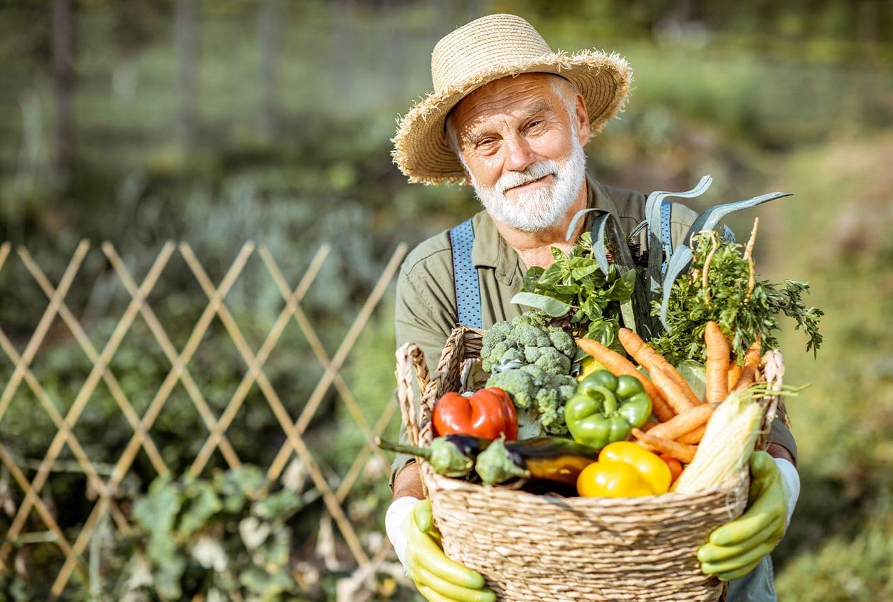 Ernährungs-Tipps für Senioren